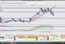 Memaksimalkan Profit Dengan Volatility Stop